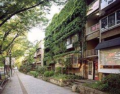 表参道の並木道と建物がマッチする