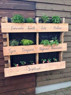 If you are looking for Diy Projects Pallet Garden Design Ideas, You come to the right place. Below are the Diy Projects Pallet Garden Design Ideas. Herb Garden Pallet, Herb Garden Design, Pallets Garden, Palette Herb Garden, Herbs Garden, Pallet Gardening, Fence Garden, Pallet Garden Ideas Diy, Pallet Garden Walls