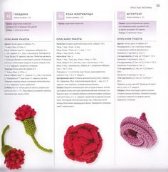 100 вязаных цветов спицами и крючком (50) (681x700, 268Kb)