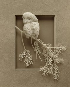 Beautiful paper sculptures from Canada caught on film. #paper #sculpture #photography