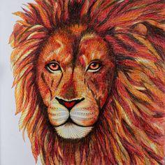 Predstavuji Vam Sveho Lva Ohnivaka Wildsavannah Milliemarotta Coloring Coloringbook Adultcoloringbook Adultcoloring Pencils Fabercastell