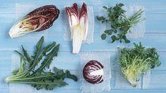 Winter salad greens / Andrew Lehmann Styling by Jane Hann