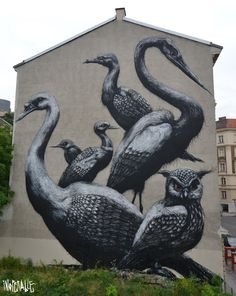ROA - New Mural In Vienna street art>  Our tips for things to do in Vienna: http://www.europealacarte.co.uk/blog/2010/07/28/the-best-of-vienna-travel-tips/