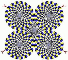 Do you think this picture turns? This optical illusion arises from involuntary eye moveme Optical Illusions Pictures, Illusion Pictures, Illusions Mind, Wild Pictures, Cool Pictures, Beautiful Pictures, Hand Gif, Art Optical, Graphic Design Pattern