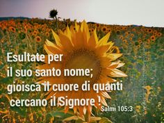 Salmo 105:3