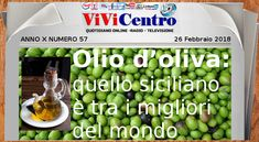 Olio di oliva: quello siciliano è tra i migliori del mondo