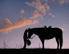 It's Just A Horse Photo by Phyllis Burchett -- National Geographic Your Shot