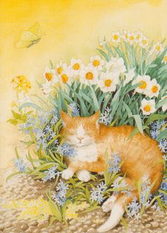 Orange sleeping cat by floquilter, via Flickr