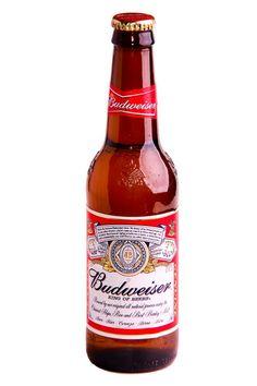 Budweiser - Beer