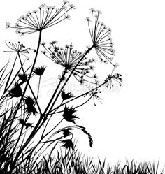 Google Image Result for http://i.istockimg.com/file_thumbview_approve/7900355/2/stock-illustration-7900355-grass-silhouettes.jpg