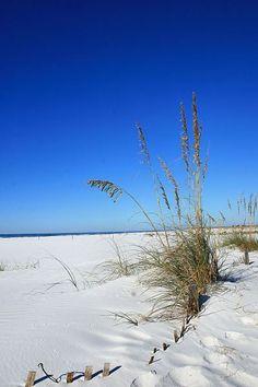 Panama City Beach Florida - pcbeachdailyphoto.wordpress