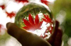 crystal ball By Simon Bond