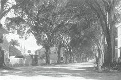Oude foto's van Suriname, Zuid-Amerika