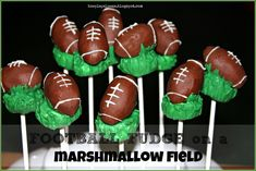 Super Bowl Desserts are something that sets the tone for the Big Game. No matter which team you are supporting, if you are hosting a Super Bowl party at your home, you need to stack up some football themed Super Bowl Party food items that'll be a winner with everyone. You should also keep some …