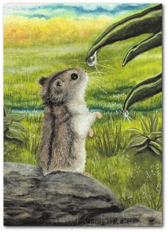 Lil Hamster  What to Dew  Prints or ACEOs by by AmyLynBihrle, $8.99