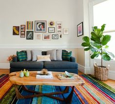 This living room has it all... tasteful frame wall, fiddly leaf, color, etc.