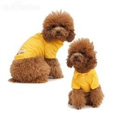 Pure Orange Yellow Pet Puppy Dog Clothes Polo T Shirt Appare by tech9trading - $20.23