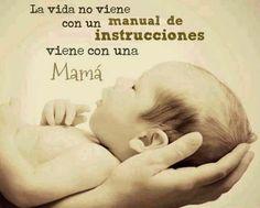La Vida no viene con un manual de instrucciones pero si viene con una Mamá la que se encargará de cuidarnos y que seamos personas de bien (y)