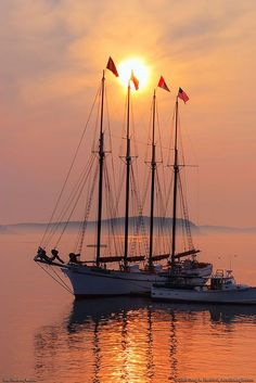 Schooner off Bar Harbor and Mount Desert Island, Acadia National Park, Maine. Photo Greg in Maine Bar Harbor Maine, Mount Desert Island, Tall Ships, Water Crafts, Sailing Ships, Sailing Boat, National Parks, Scenery, Around The Worlds
