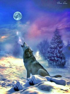 Howling Wolf,,,,