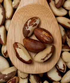 Can Dogs Eat Black Walnuts | foods that dogs can not eat ...