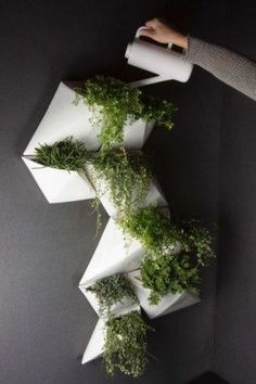 10 Reasons To Love Vertical Gardens 10 Genius Vertical Gardening Ideas For Small Gardens The post 10 Reasons To Love Vertical Gardens appeared first on Garden Diy. Large Backyard, Backyard For Kids, Small Patio, Patio Plants, Indoor Plants, House Plants, Vertical Gardens, Small Gardens, Plant Wall