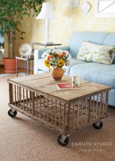 Chicken cage coffee table