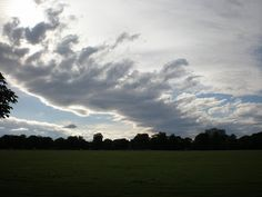 The Stray Today: Clouds