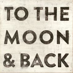 To the Moon And Back*
