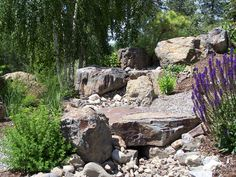 steep+grade+landscaping+xeriscaping | of interest in a huge grass free yard the client is able to move from ...