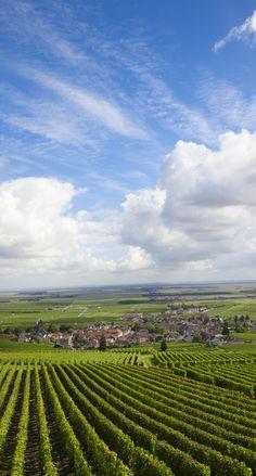Terre des Épicuriens, la Bourgogne recèle de nombreux trésors, à commencer par son prestigieux vignoble mondialement réputé, sa gastronomie et son art de vivre, ses abbayes qui ont rayonné durant tout le Moyen Âge, ses châteaux, sa nature généreuse.