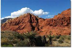 Red Rock Canyon; Las Vegas, Nevada