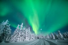 Why Magical Lapland Is The Place To Be Right Now