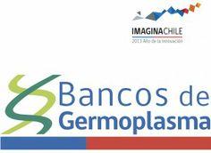 Red de Bancos de Germoplasma INIA   INIA