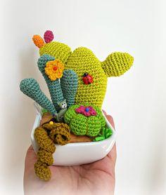 Cactus Amigurumi - Composizione piante grasse a crochet- Scultura Tessile - Home gift by CreoErgoSumHandmade #italiasmartteam #etsy