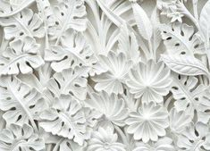 DekoShop Fototapete Vlies Tapete Moderne Wanddeko Wandtapete Alabaster Blumen Relief VEXXXL x Abstraktion und Kunst 3d Wallpaper Design, View Wallpaper, Photo Wallpaper, Designer Wallpaper, Wall Stickers Wallpaper, Paper Wallpaper, Art Mural, Wall Murals, Wall Art