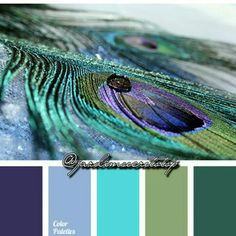 Purples, turquoise, and greens
