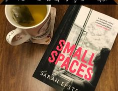 book review small spaces sarah epstein Staying Up Late, Book Reviews, Small Spaces, How To Find Out, Writing, Books, Libros, Book, Book Illustrations