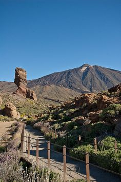 Tenerife, Easy Jet, In Ancient Times, Canario, Island Beach, Canary Islands, Phuket, Solo Travel, Continents