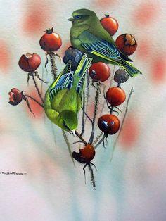 Работы художника Ruud Weenink (52 фото) Bird Artwork, Bird Paintings, Acrylic Paintings, Decoupage, Fruit Painting, Country Art, Illustrations, Little Birds, Wildlife Art