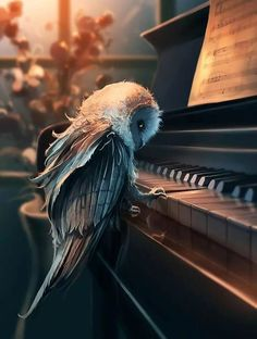 Amazing Digital art painting of an owl playing the piano. Illustrations, Illustration Art, Wow Art, Fantasy Creatures, Urban Art, Amazing Art, Awesome, Fantasy Art, Concept Art