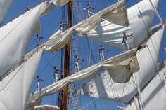 Lisbon leg of the Tall Ships race 2016 – in pictures