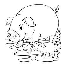 Coloring Pages Of Animals Pig