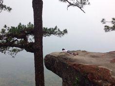Phu Kradueng National Park (Thailand): Address, Top-Rated Attraction Reviews - TripAdvisor