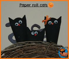 Paper roll cats