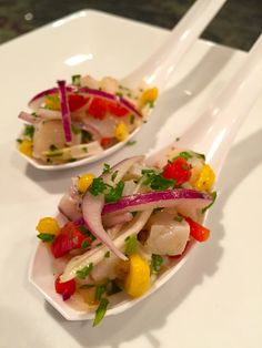 Conch ceviche spoons