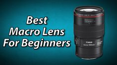 Best Macro Lens For Beginners | What is 1:1 Magnification Ratio?