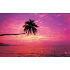 Pink Beach Sunset Wallpaper Desktop Liked On Polyvore Featuring Backgrounds