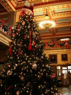 asheville courthouse christmas tree —by zen on flickr from Fotopedia