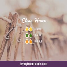 10 Essential Oil Blends For A Great Smelling Home by Loving Essential Oils Best Smelling Essential Oils, Essential Oils For Pain, Essential Oils Cleaning, Essential Oil Scents, Orange Essential Oil, Essential Oil Uses, Essential Oil Diffuser Benefits, Essential Oil Combinations, Diffuser Recipes